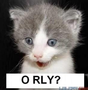 o-rly-2